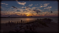 Sunset Niendorf (LB-fotos) Tags: 70d deutschland germany sonnenuntergang baltic sea beach bridge coast kste ocean ostsee pier seabridge seebrcke strand sunset schleswigholstein de