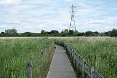 Walthamstow Marshes, Lee Valley London (Matt_Caville) Tags: walthamstow marsh marshes east london landscape photography nature wildlife