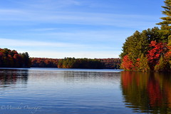 A reflection of fall (Yummilicious Cakes & Desserts) Tags: reflection fall red orange nature lake beauty new york usa adirondack photography enjoy realx ngc