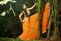 South Actress Madhuchandaphotos Set-3-Hot In Traditional Dress (23)