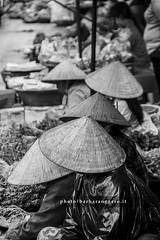 Caps (Barbara Oggero) Tags: street streetphotography travel asia indochina vietnam hu market cap hat cone iconography tradition woman fruit vegetable rain water people capture city urban