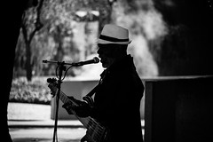 shady blues (heavysoulclick) Tags: sanfrancisco streetphotography bw blackandwhite candid steel pan hat guitar sticks mic trees people live music canon5d 500mmlens nikoneos f8