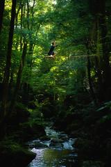 Highline Wolfsschlucht #3 (Michael-Herrmann) Tags: nikon d7100 1755mm 28 high line highline blackforest black forest germany deutschland wood river bridge slackline slack water todtnau tree trees sports balance schlucht height