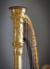 Harp (Russ Argles) Tags: harp strings golden canon70d eos music pluck ornate