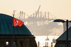 port of hamburg (mind_surfer) Tags: hamburg stadt city hafen harbor harbour flagge flag red rot kran krne crane cranes landungsbrcken elbe fluss river schiff ship dampf steam sunset sonnenuntergang tele telephoto sommer summer tamronspaf70300mmf456divcusd
