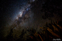 Voie lacte (R.B.Pixx) Tags: guyane savane roche virginie paysage voie lacte milky way toiles nuit