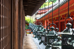 Ornate lanterns at Kasuga Grand Shrine (basair) Tags: red nara honshu japan naraprefecture naracity kasugataishashrine famousplace surfacelevel shrine templebuilding gate japaneseculture metal ornate lantern hanging shinto religion builtstructure inarow cultures architecture outdoors taisha asia old ancient colorimage buddhism history multicolored unescoworldheritagesite entrance nonurbanscene thepast traveldestinations colors tranquilscene spirituality wood wall