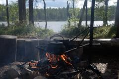 the best part (Tuomo Nyknen) Tags: suomenluonto nature fireplace nuotio camp campfire kainuu suomussalmi synjsuo