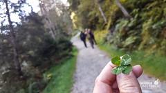 Harbachtal  Wanderung  Salzburgerland September 2016_web (20 von 97) (WIEDERUNTERWEGS.com) Tags: 2016 salzburgerland hohe tauern wandern wanderhotels umweltzeichen lebensministerium