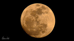 moon (alan jaff) Tags: moon nature nikon sigma erbil d800 kurdstan mywinners 150500mm