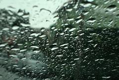 (lincoln koga) Tags: camera vacation rain sony chuva frias gotas observe lugares lincoln passeio criao observando koga encontros aprendizado fragmentos explorando chamado admirao contemplao pointshot pedaosdemim expressando aguardo euvejo lincolnkoga novosrumos euencontro danatureza meutempo lincolnseijikoga novoslugares cameracompacta dscw220 meumomento refgiosecreto silncioreflexivo tempodesilncio meusencontros voudescobrindo vouexplorando ofertadeamor teentrego nossoviver tudoemmim aguardoporvoc entreasgotas achuvacai