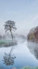 Tranquil Reflections (jactoll) Tags: mist misty reflections river landscape nikon tranquility arrow warwickshire lonetree alcester rivermist riverarrow d7000 tranquilreflections jactoll nikcolorefexpro4