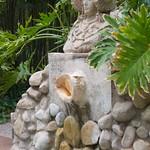 Garden of Healing (Huerto del Cura).Garden in Elche, Spain