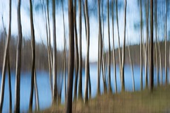 something completely different (Gies!) Tags: lake meer icm bewogen intentionalcameramovement regniessart