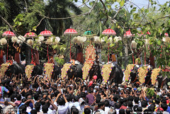 MG_3504 (PRATHAPSTOCKIMAGE) Tags: india elephant festival canon religion decoration kerala trissur pooram nettipattom eos60d