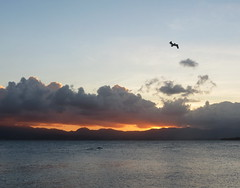 Coucher de soleil sur Basse-Terre (Sylviesgmb) Tags: sunset sea mer france clouds atardecer mar dom pelican nubes caribbean nuages francia coucherdesoleil guadeloupe antilles basseterre plican gosier