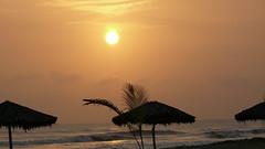 Playa Dorada , Estado Miranda Venezuela (jopimalg) Tags: sol beach mar venezuela playa arena amanecer turismo palmera soleado playadorada bosquemar cupira otilla estadomiranda machurucuto playapintada troncal9