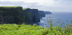(lo ) Tags: ocean ireland sea sky cliff green water grass clouds mar grow cliffs tryp moher irlanda oceano