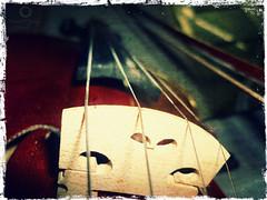 violin (KamalGh) Tags: music play violin strings