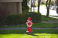 OOS - OUT OF SERVICE (Eyesplash - the new slow way) Tags: blue red sky green grass weather sign clouds energy rocks waves colours force tulips wind ships windy firehydrant strong englishbay outofservice whitecaps