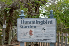 Hummingbird Garden (The Brit_2) Tags: gardens botanical texas tx south christi corpus