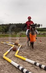 IMG_6638.jpg (florian_1_1_2) Tags: funday pferde turnier reiten perd reitsport alzinger gelassenheit geschicklichkeit reitanlage gemling reitanlagealzinger