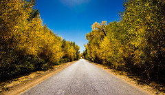 road in fall (Carlos*P) Tags: china autumn fall nature canon eos tokina 1116 60d