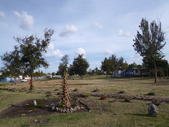 Another view of the park (prondis_in_kenya) Tags: park tree stone youth kenya path nairobi group jericho hotdryseason