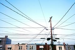 ninety three (eshearing) Tags: powerlines blueskies readingpa rowhomes