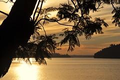 pr-do-sol na represa... Boa Semana! (Ruby Ferreira ) Tags: dam represabillings sunset prdosol silhuetas silhouettes tree branches