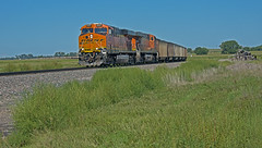 BNSF 6337 east bound coal load-McGraw, Nebraska. (Wheatking2011) Tags: bnsf 6337 east bound coal load mcgraw nebraska helpers will be added train is heading towards alliance