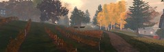 Autumn is Back in Cœur (ErikoLeo) Tags: villedecoeur flickrlovers landscape secondlife secondlife:region=normandiecoeursecondlifeparcelhamletinnormandiecoeursecondlifex229secondlifey93secondlifez24