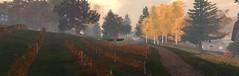 Autumn is Back in Cur (ErikoLeo) Tags: villedecoeur flickrlovers landscape secondlife secondlife:region=normandiecoeursecondlifeparcelhamletinnormandiecoeursecondlifex229secondlifey93secondlifez24