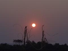 DSC06315 Entardecer Em Nova Odessa SP (familiapratta) Tags: sony dschx100v hx100v iso100 natureza sol cu nature sun sky