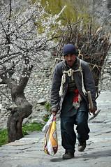 Struggle of Sawyer with great devotion (Furqan LW) Tags: struggle hardworking man human sawyer gilgit pakistan portrait peoplephotography naturephotography blossom