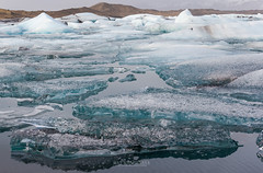 Icebergs in Jokulsarlon Glacier Lagoon, Iceland (Kanonsky) Tags: snow arctic beautiful blue cold environment europe famous floating freeze glacial glacier ice iceberg iceland jokulsarlon lagoon lake landscape melting nature polar sea travel white