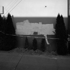 Portland (austin granger) Tags: portland evidence shrubs family caution correspondence mind gf670