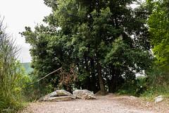 _DSC5202.jpg (SimonR91) Tags: lamerosse fiastra sibillini montisibillini regionemarche marche italy italia mountains lake trekking beauty nikon nikond750 clouds sun blades redblades