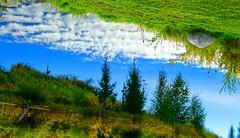 Water Art: Open to interpretation (peggyhr) Tags: peggyhr lake water blue green grey clouds reflections sky lakeshore trees grass dsc01957a bluebirdestates alberta canada textures infinitexposurel1 super~sixbronze☆stage1☆ thegalaxyhalloffame thegalaxytopawarders