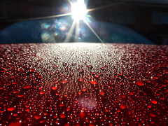 Wet Bonnet (foggyray90) Tags: outdoor dewdrops carbonnet refraction rainboweffect morning autumn audi beading