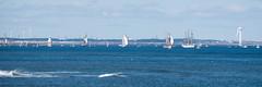 Tall Ships (warth man) Tags: d750 nikon70300mmvr tallships blyth northumberland tallships2016blyth sails paradeofsail