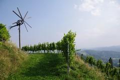 Klapotetz an der Sdsteirischen Weinstrae ( eulenbilder - berti ) Tags: steiermark sdsteiermark sdsteirischeweinstrase herbst 2016 wein trauben landschaft hgel