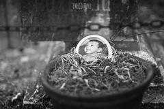 fallen child (Enrico Frau (l'originale)) Tags: decay abandoned cemetery a6000 sony nikkor 50mm sauto f14 1685 nikon d7000 ilce6000 bw blackwhite cimitero monumental sardegna sardinia italy italia