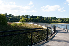 Boardwalk (juliafrenchfrey) Tags: turningpointpark rochester rochesterny roc nature water river geneseeriver genesee