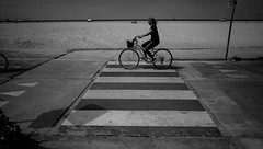checkered lane (dustin.gebhard) Tags: deadbeatgallery streetphotography ricohgr ricohgrii monochrome monochromemaniac blackwhite blackandwhite venicebeach california losangeles bike checkered pacific coast beach