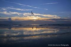 Low tide and reflecting tidal pools (Krnr Pics) Tags: sunrise crescentbeach staugustine beach florida krnrpics kernerpics