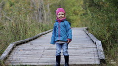 Alice (Marie-Jose Lvesque) Tags: child enfant petitefille nature paysage passerelle boardwalk outdoor automne fall qubec canada 2016 basedepleinairsaintefoy