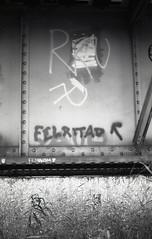 Errata (Magnus Bergstrm) Tags: canonae1 canon ae1 analog bw blackwhite blackandwhite kodak kodaktmax100 kodaktmax tmy 100tmx sweden sverige karlstad vrmland bridge railroad steel bolts girder girders tag soviet graffiti