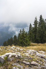 Poludnica 1548 m n.m. (Miroslava Balazova LAZAROVA) Tags: forest nature landscape beauty slovakia janska dolina mist trees mountain rock hiking view