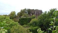 Blick auf Burgruine Rheingrafenstein